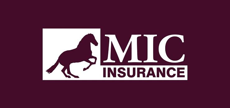 assurance décennale mic
